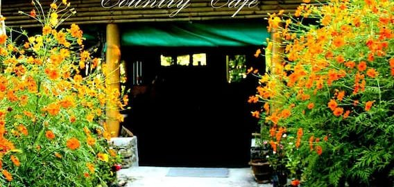Country-Cafe-Lungchok-Farmstay-Kewzing-OurGuest